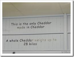 Az egyetlen Cheddar ami Cheddarban készül  :)  Egy egész tömb 28 kg-t nyom :)